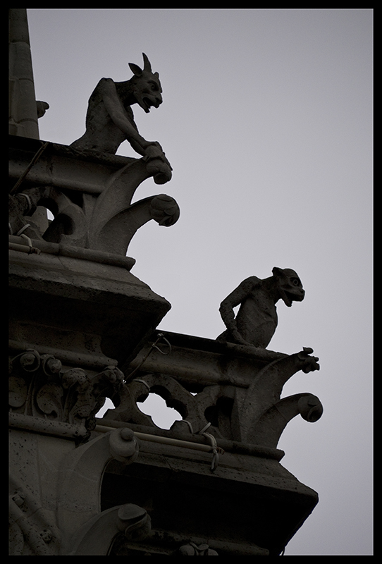 Notre Dame Gargoyles 1010303 BLOG