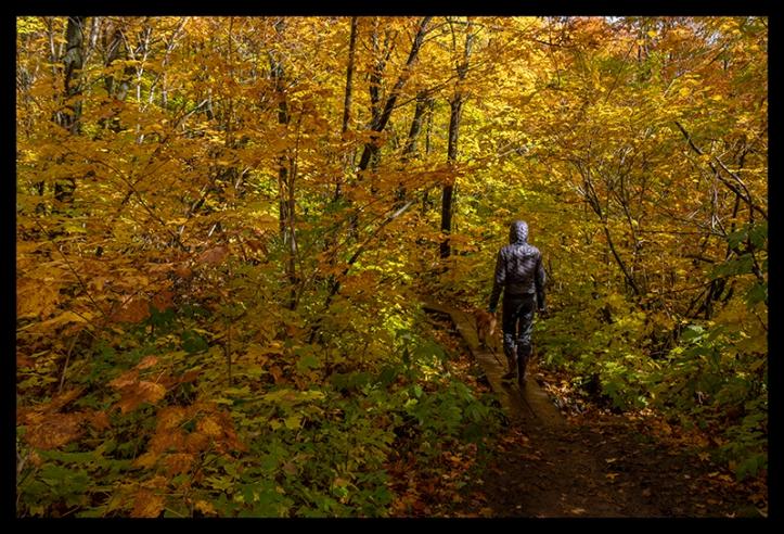 fall-color-1350439-blog1