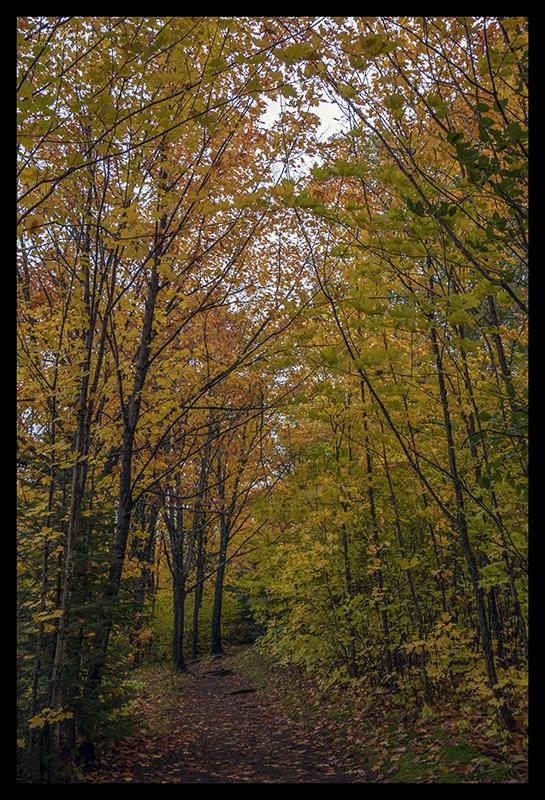 oberg-mountain-trail-1350199-blog