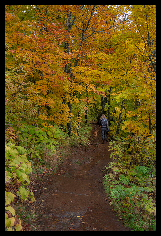 oberg-mountain-trail-1350332-blog