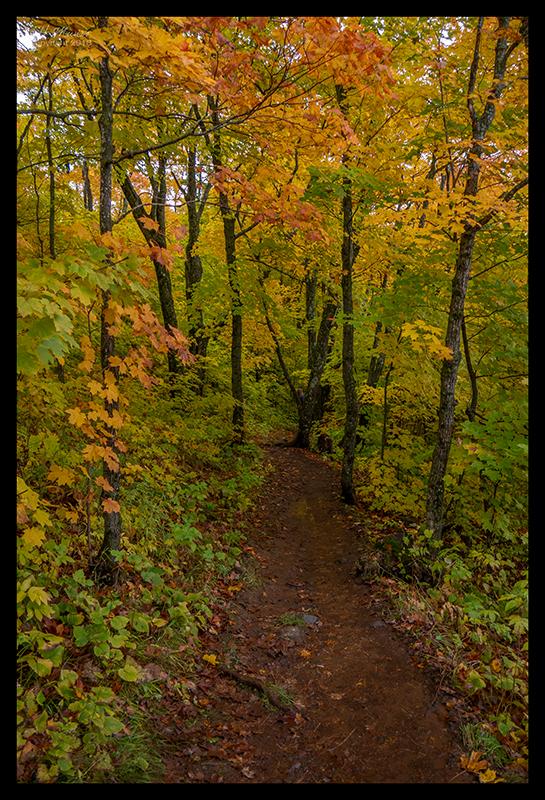oberg-mountain-trail-1350342-blog
