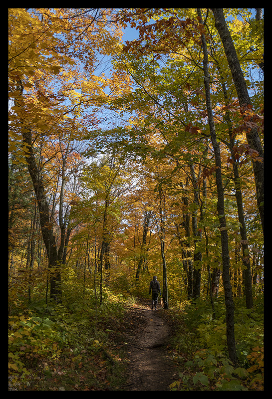 oberg-mountain-trail-1350434-blog