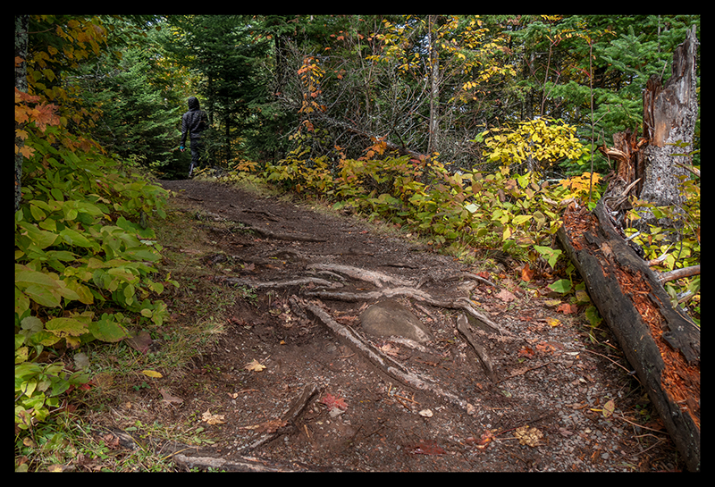 oberg-treacherous-trail-1350491-blog