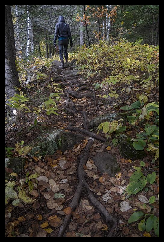 rough-trail-1350757-blog