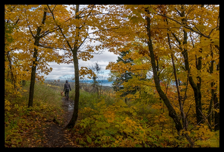 superior-trail-1350479-cc-blog