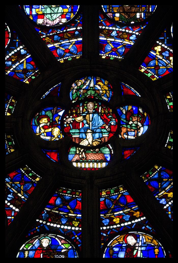 Notre Dame rose 1010402 BLOG