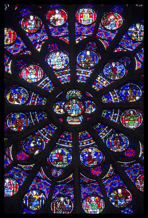 Notre Dame rose 1010398 BLOG