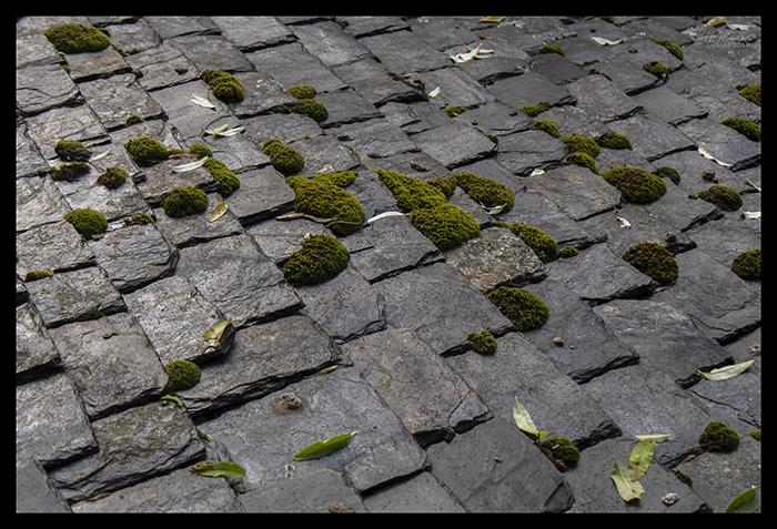 Roof tiles Mont St Michel 1500192 CR BLOG