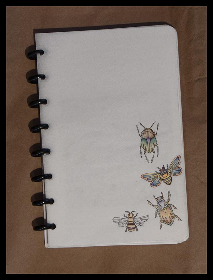 hand-writing-1020977-blog