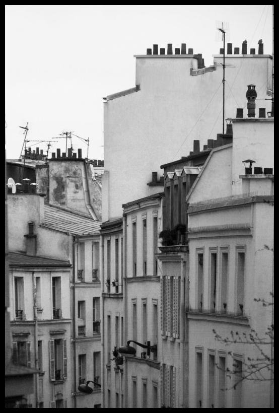 Les toits de Paris 1140313 BLOG